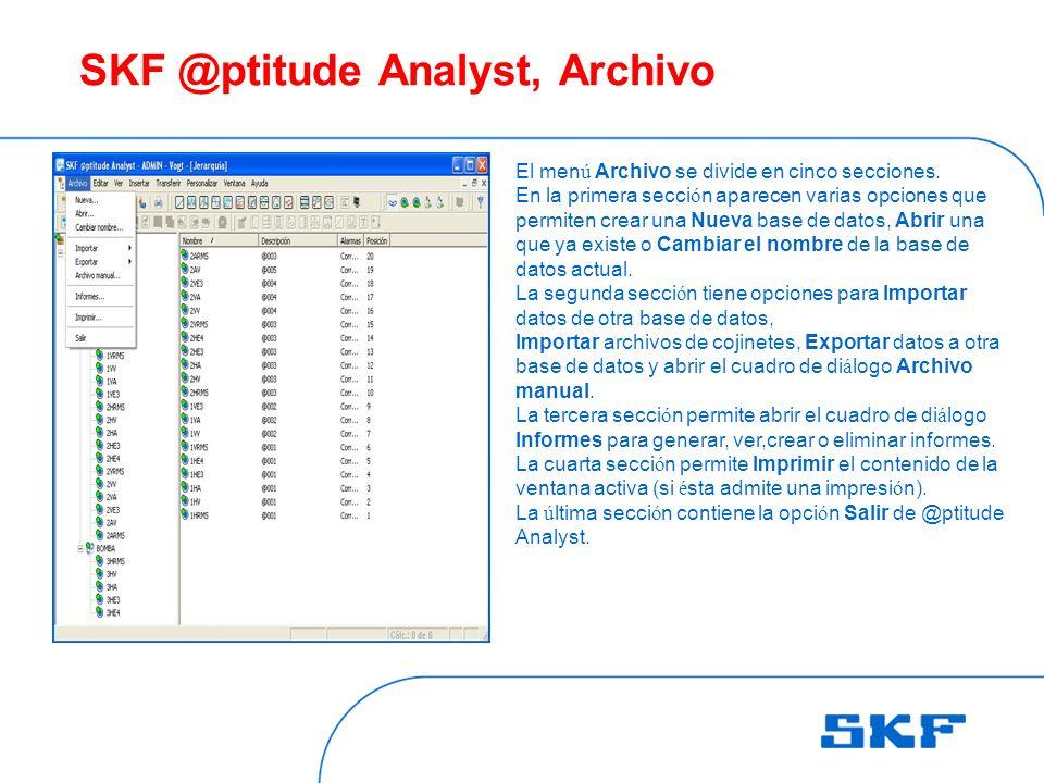 SKF @ptitude Analyst, Archivo