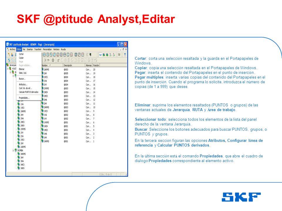 SKF @ptitude Analyst,Editar