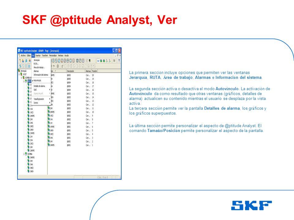 SKF @ptitude Analyst, Ver