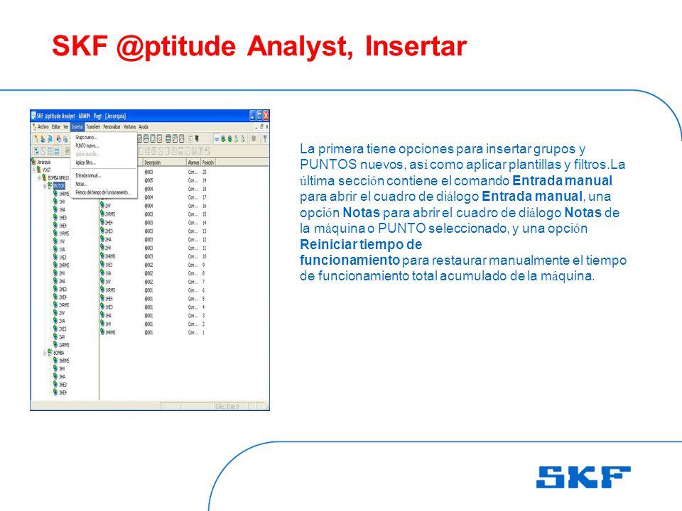SKF @ptitude Analyst, Insertar