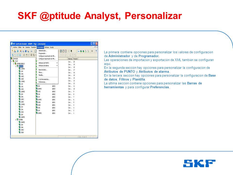 SKF @ptitude Analyst, Personalizar