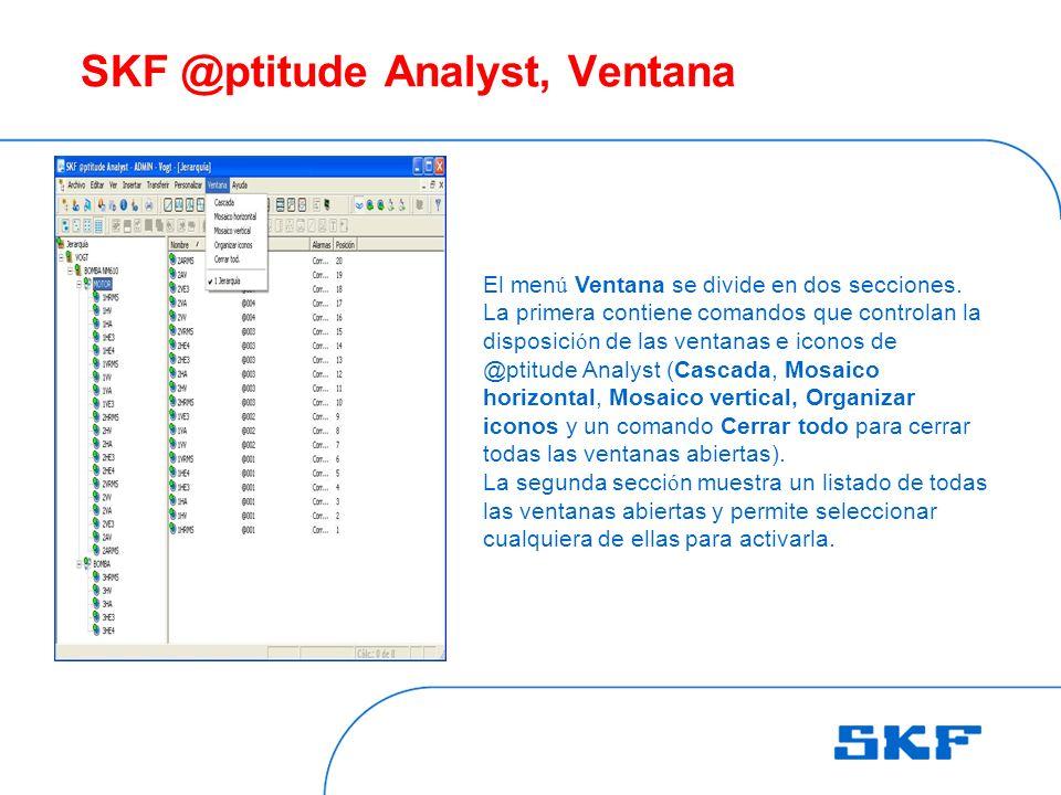 SKF @ptitude Analyst, Ventana