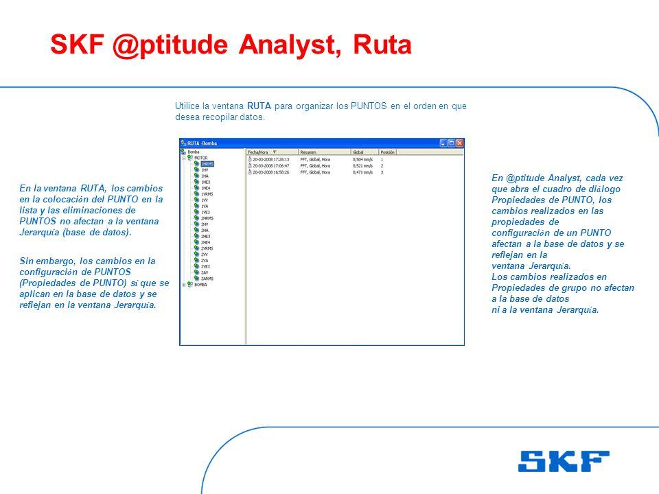 SKF @ptitude Analyst, Ruta