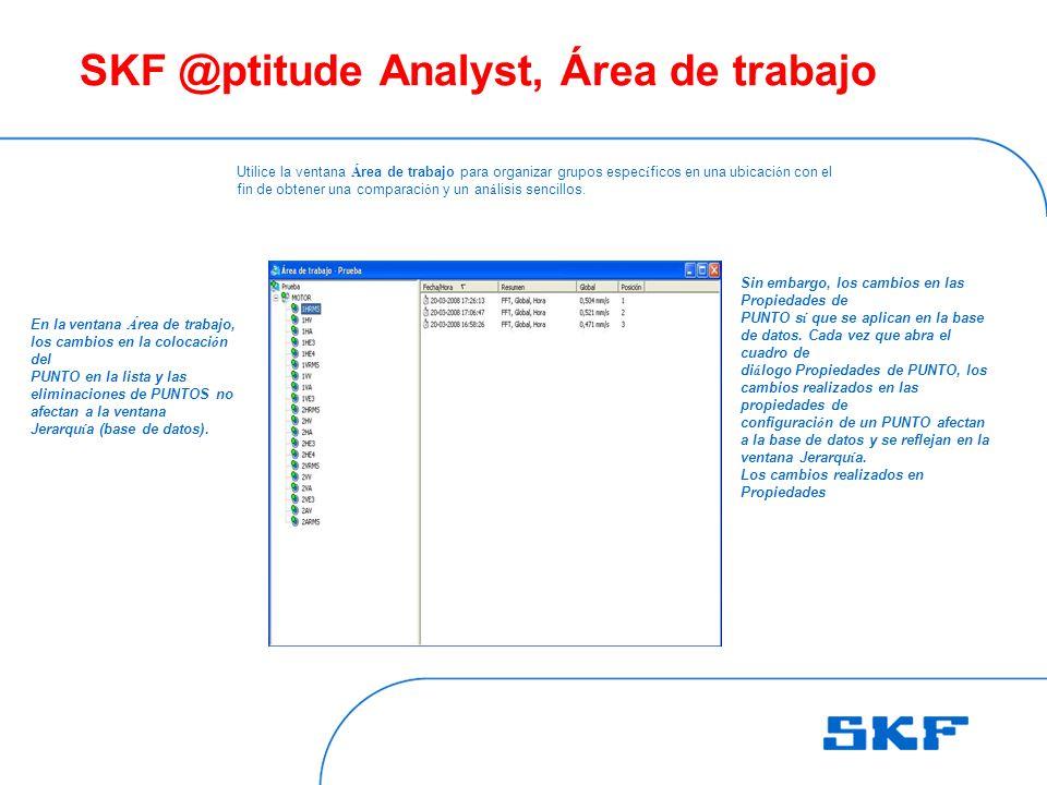 SKF @ptitude Analyst, Área de trabajo