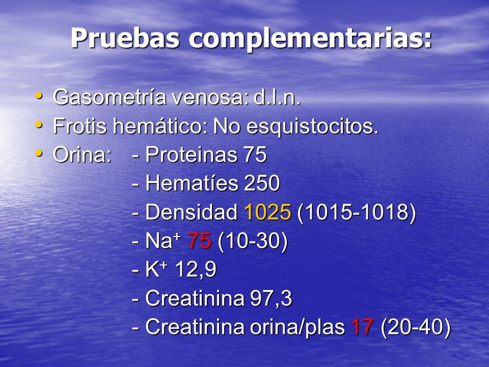 Pruebas complementarias: