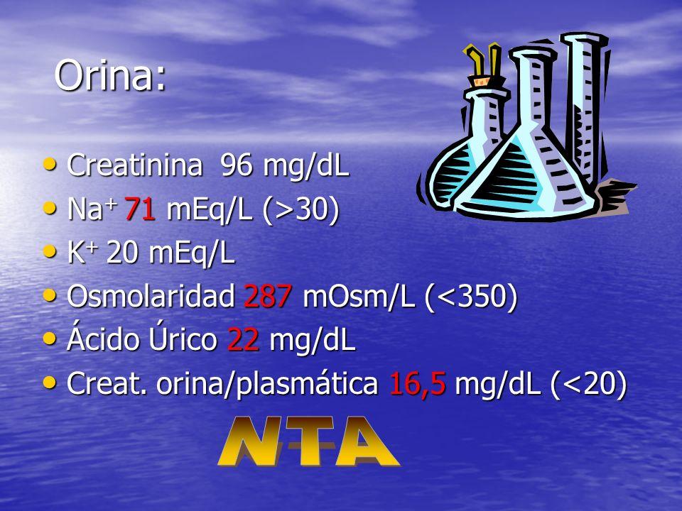 Orina: NTA Creatinina 96 mg/dL Na+ 71 mEq/L (>30) K+ 20 mEq/L