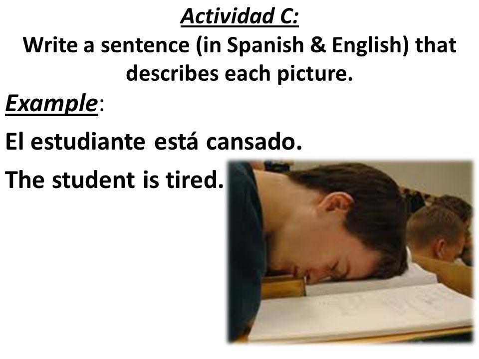 Example: El estudiante está cansado. The student is tired.