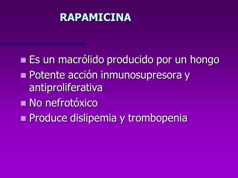 RAPAMICINAEs un macrólido producido por un hongo. Potente acción inmunosupresora y antiproliferativa.