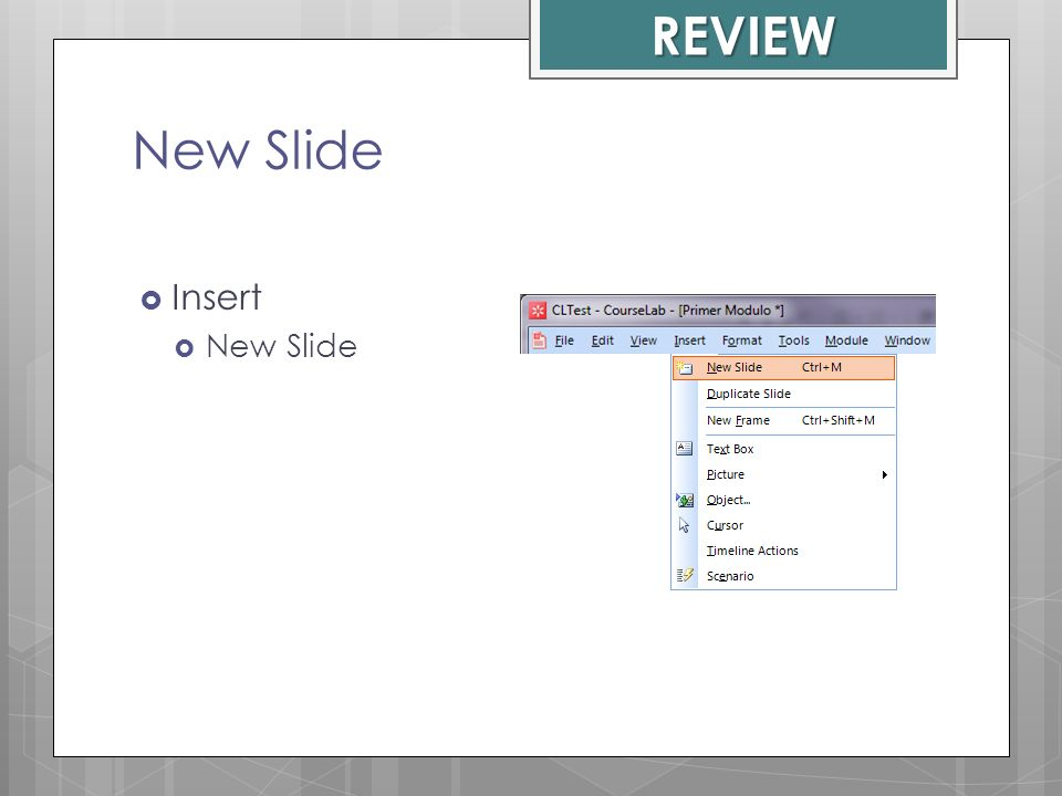 REVIEW New Slide Insert New Slide