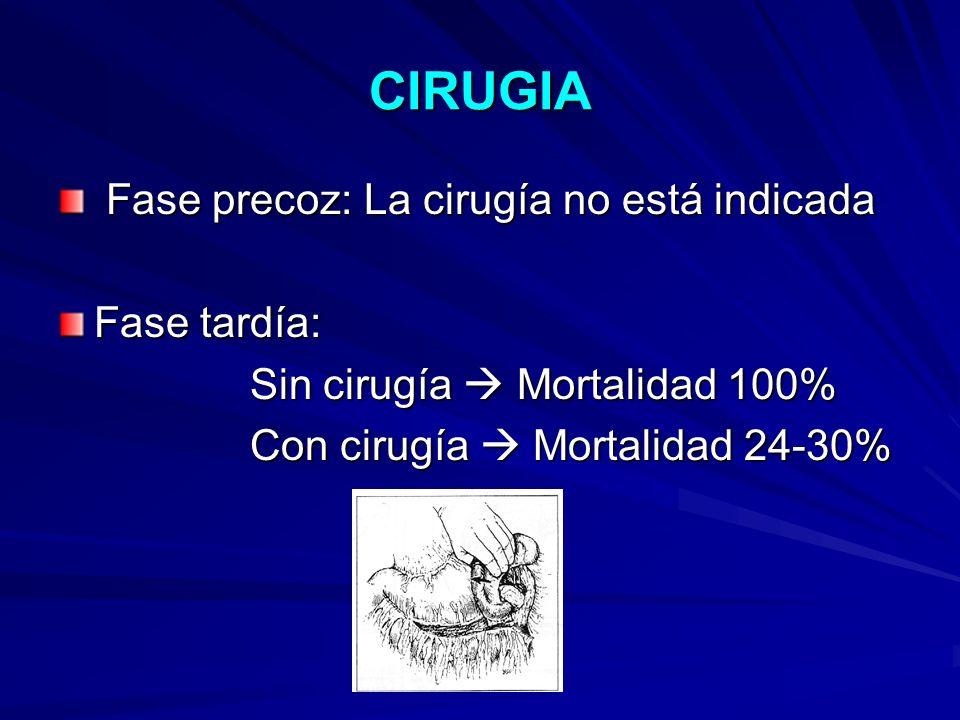 CIRUGIA Fase precoz: La cirugía no está indicada Fase tardía: