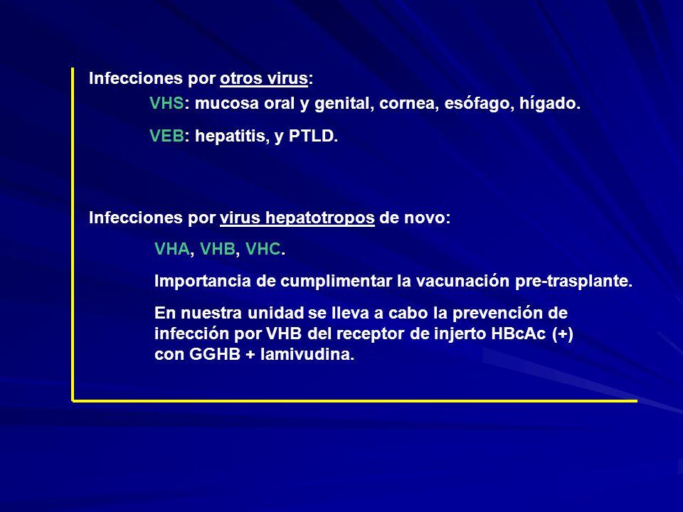 Infecciones por otros virus: