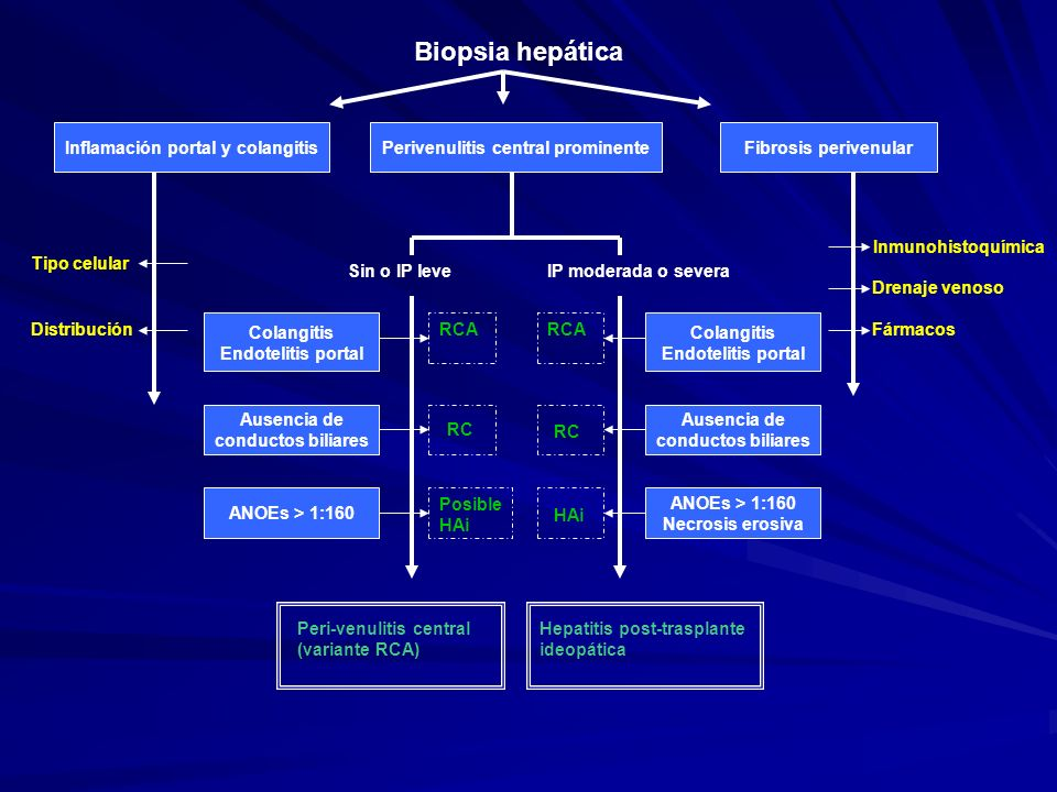 Inflamación portal y colangitis Perivenulitis central prominente