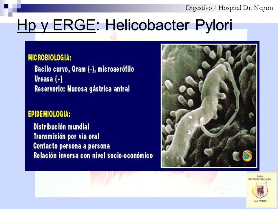 Hp y ERGE: Helicobacter Pylori