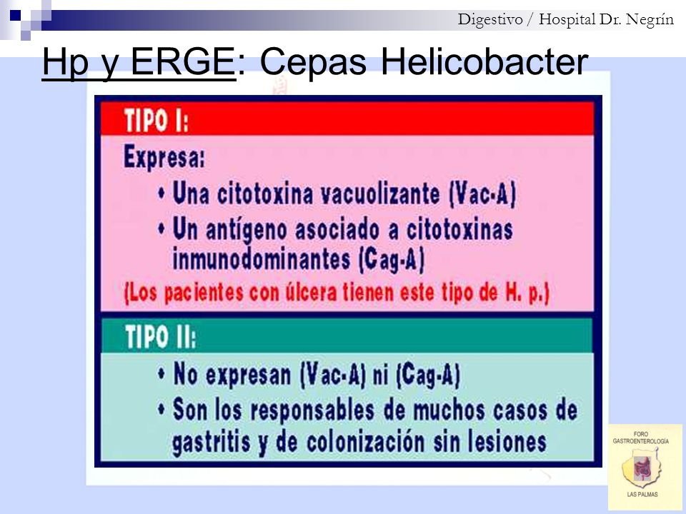 Hp y ERGE: Cepas Helicobacter