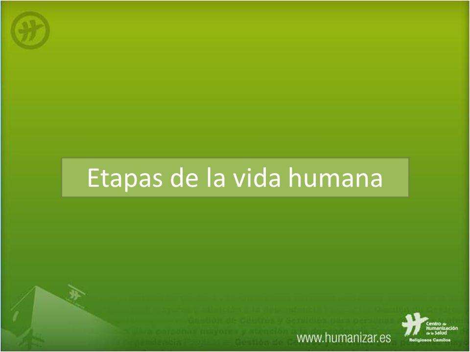Etapas de la vida humana