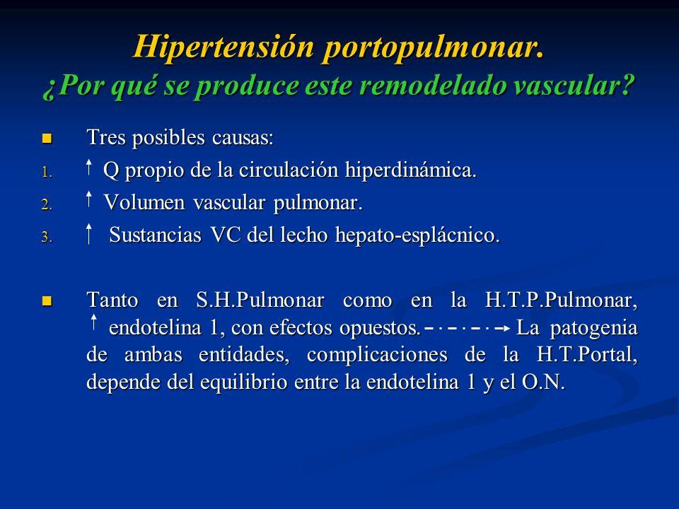 Hipertensión portopulmonar