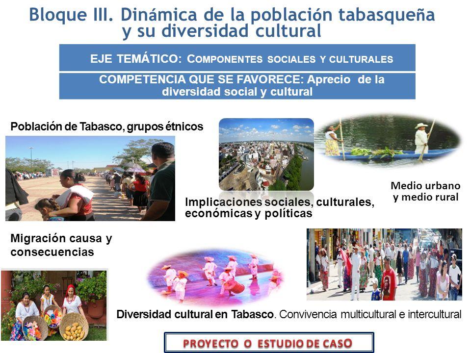 EJE TEMÁTICO: Componentes sociales y culturales
