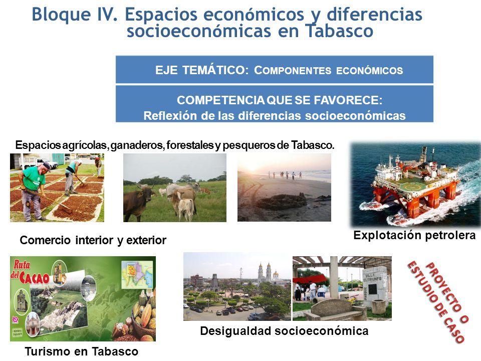 Bloque IV. Espacios económicos y diferencias