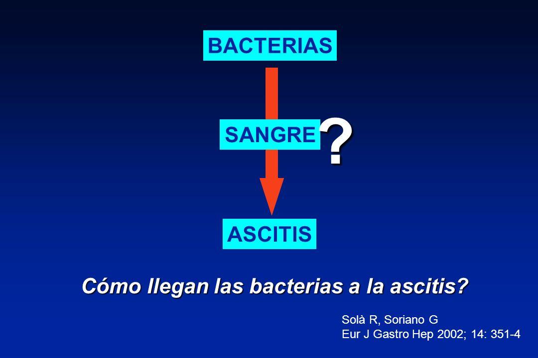 BACTERIAS SANGRE ASCITIS Cómo llegan las bacterias a la ascitis