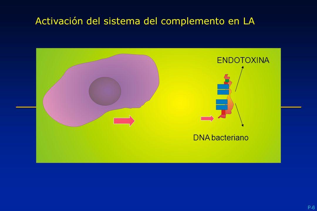 Activación del sistema del complemento en LA