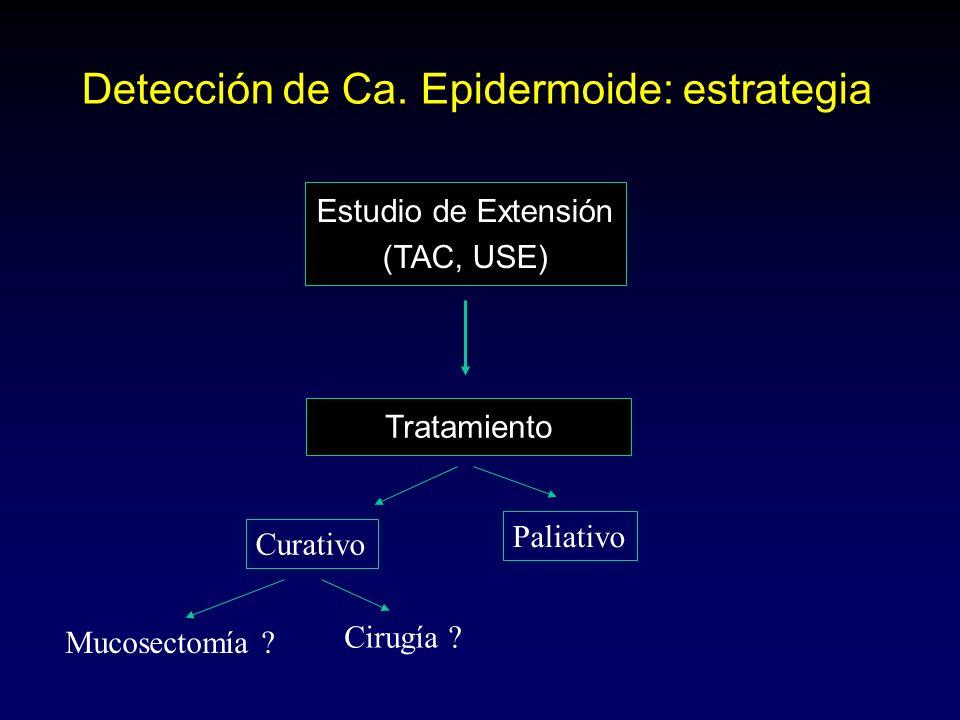 Detección de Ca. Epidermoide: estrategia