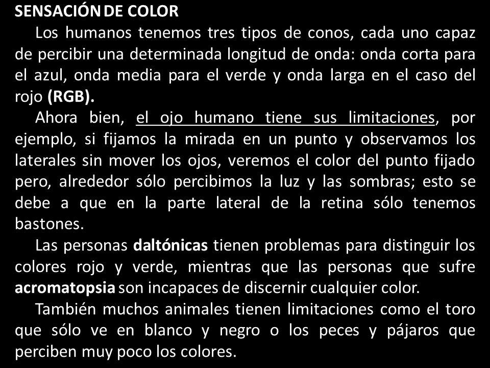 SENSACIÓN DE COLOR