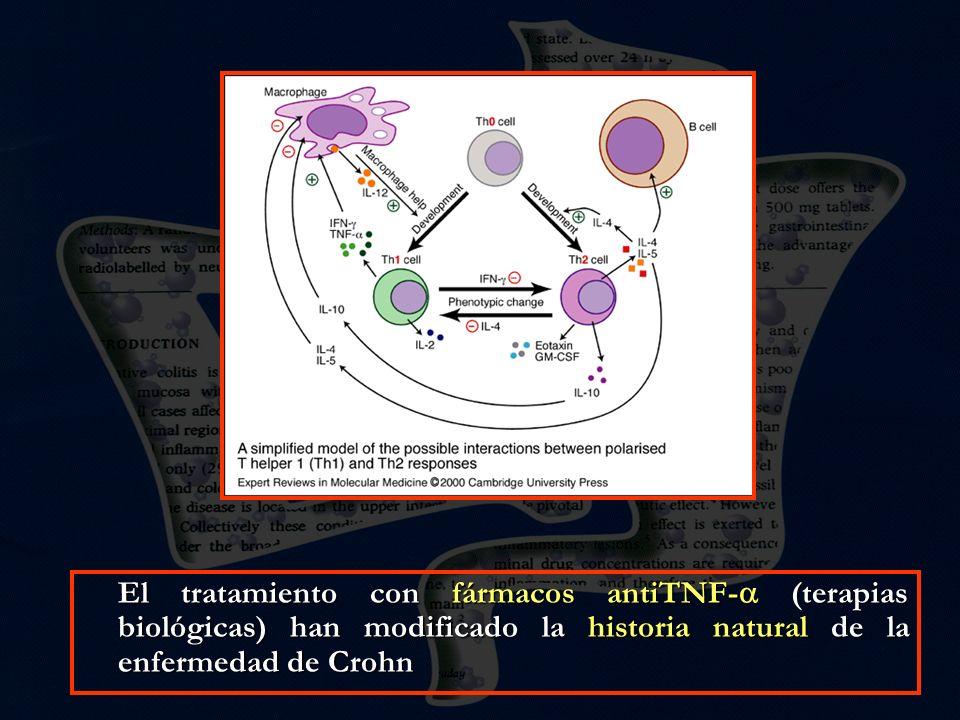 Como todos sabemos en la EII el daño tisular es consecuencia de una respuesta inflamatoria descontrolada por disregulación de la respuesta inmune del huésped frente a antígenos de la flora bacteriana residente.