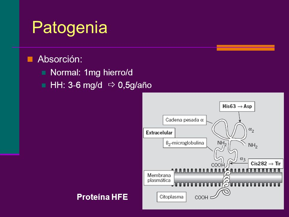Patogenia Absorción: Normal: 1mg hierro/d HH: 3-6 mg/d  0,5g/año