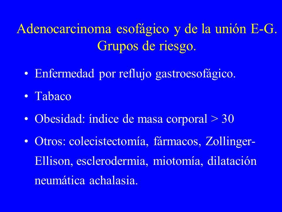 Adenocarcinoma esofágico y de la unión E-G. Grupos de riesgo.