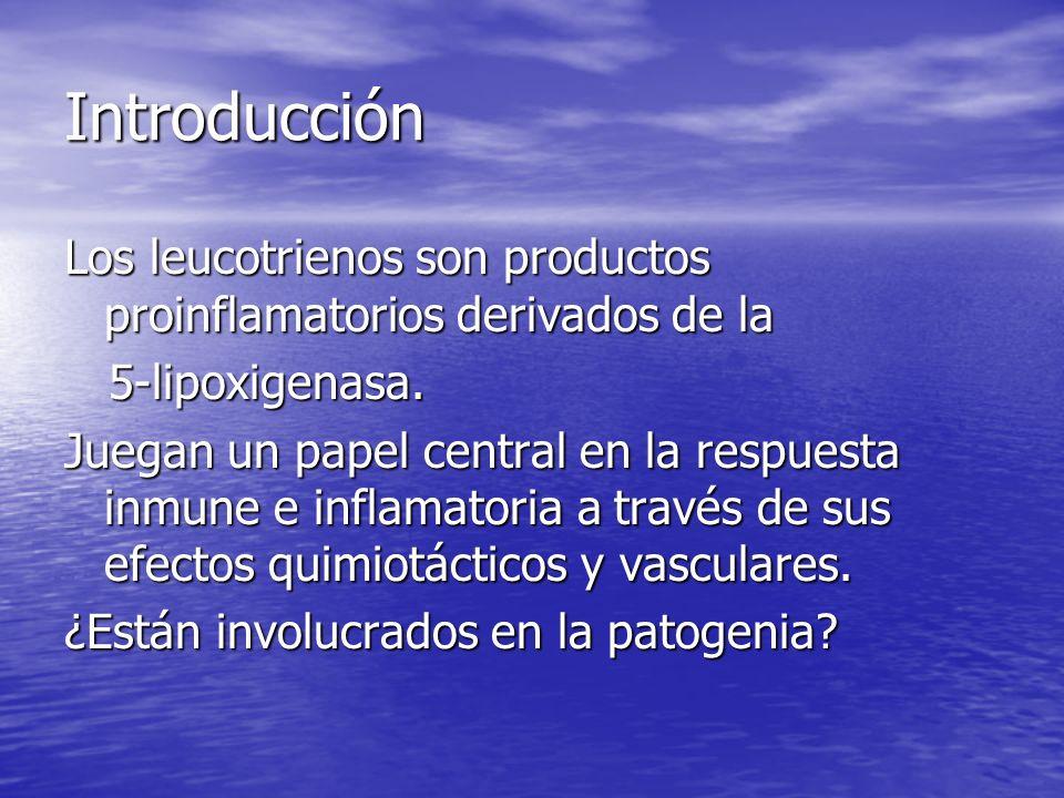 Introducción Los leucotrienos son productos proinflamatorios derivados de la. 5-lipoxigenasa.
