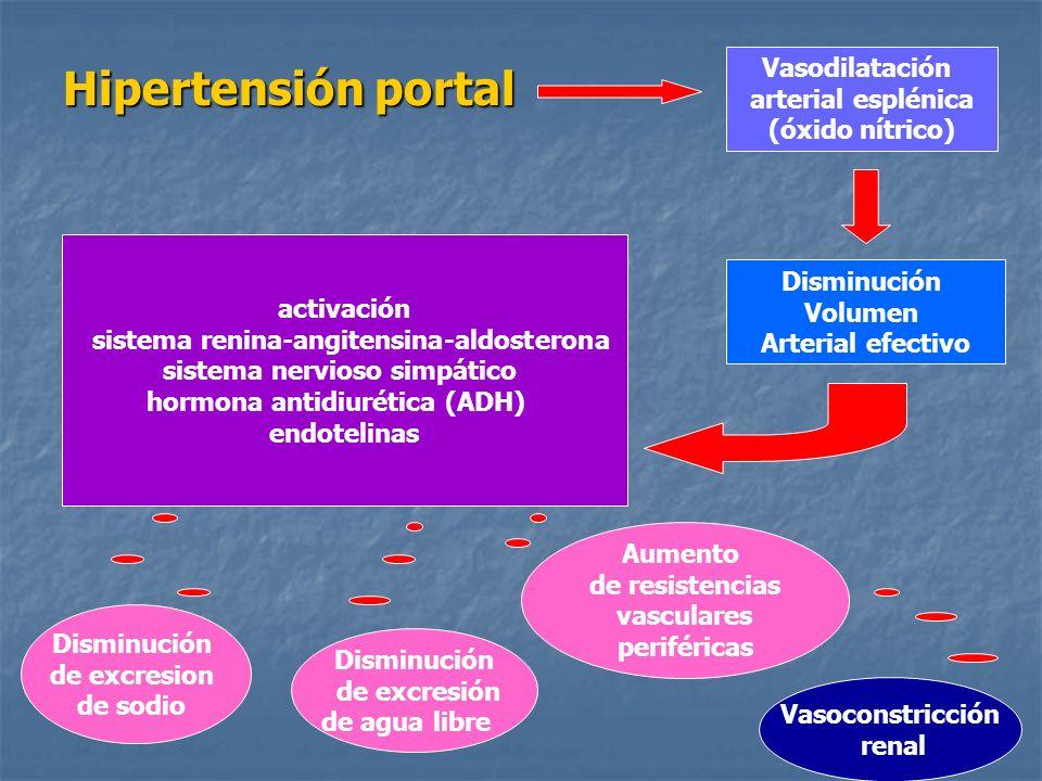 Hipertensión portal Vasodilatación arterial esplénica (óxido nítrico)