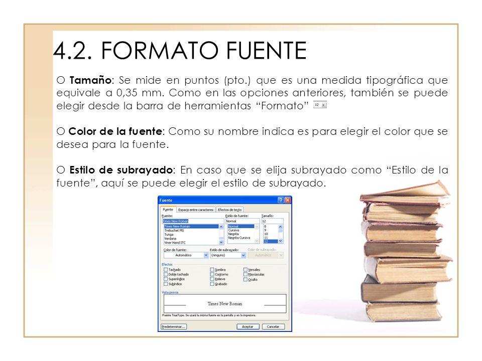 4.2. FORMATO FUENTE
