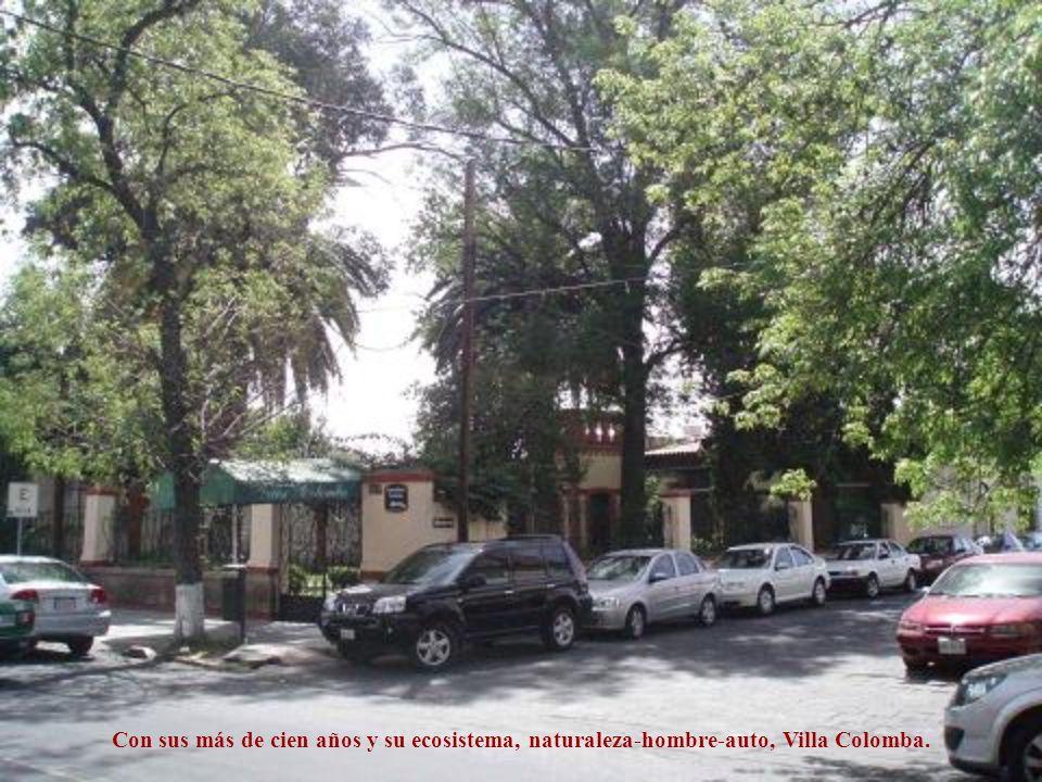 Con sus más de cien años y su ecosistema, naturaleza-hombre-auto, Villa Colomba.