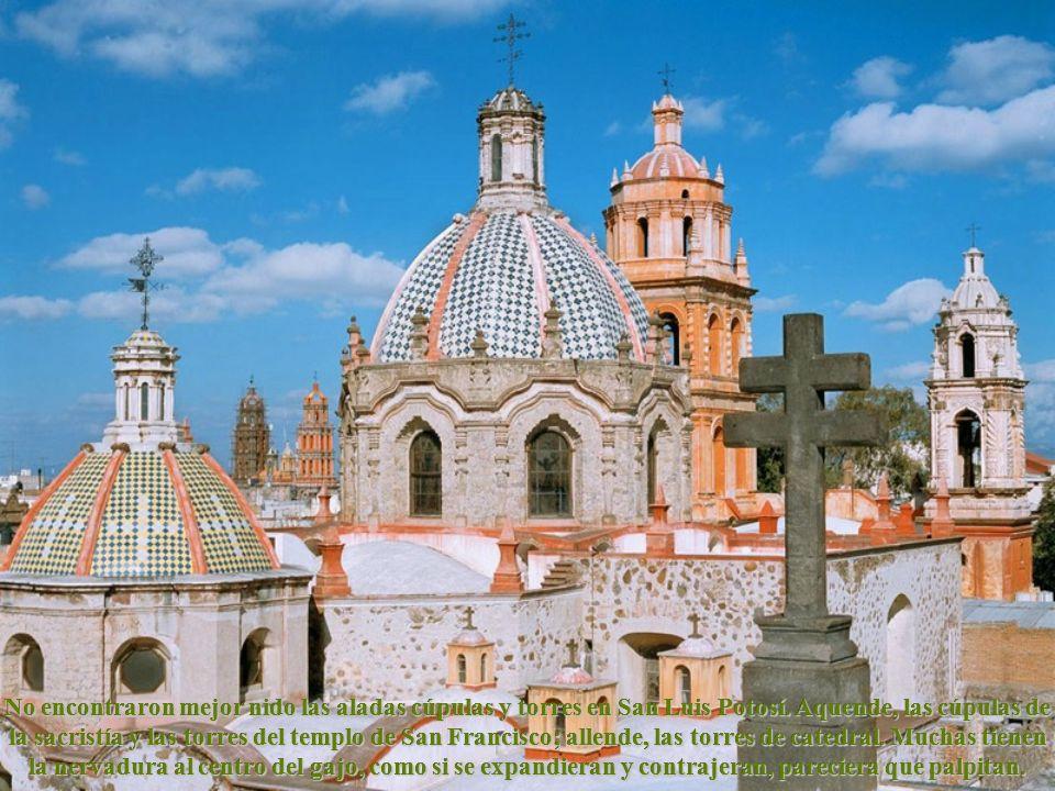 No encontraron mejor nido las aladas cúpulas y torres en San Luis Potosí. Aquende, las cúpulas de la sacristía y las torres del templo de San Francisco; allende, las torres de catedral. Muchas tienen la nervadura al centro del gajo, como si se expandieran y contrajeran, pareciera que palpitan.