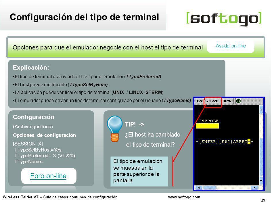 Configuración del tipo de terminal