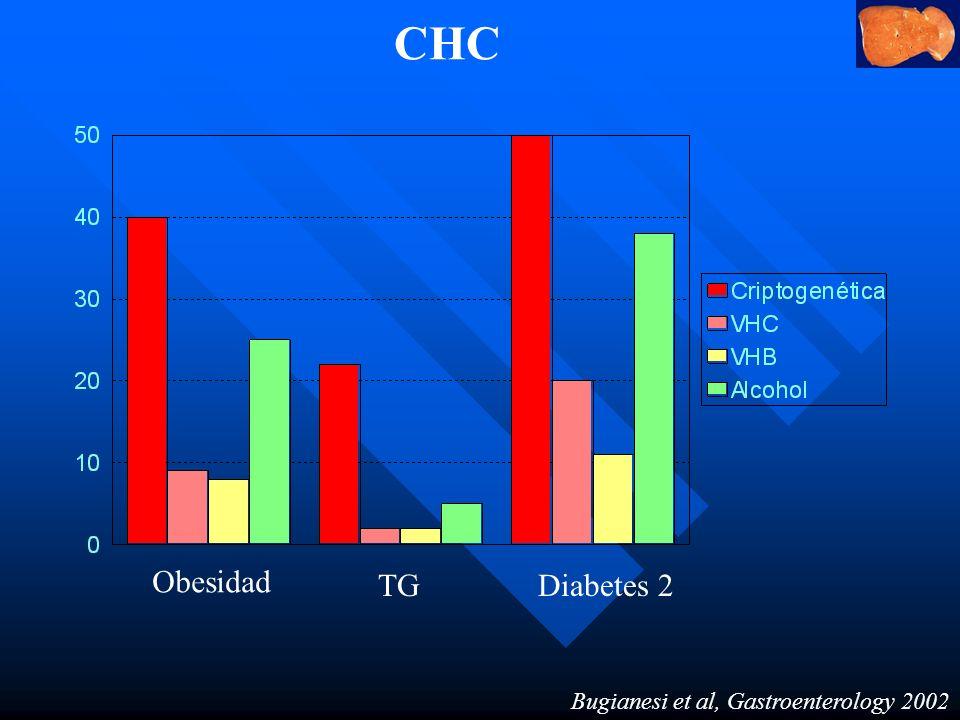 CHC Obesidad TG Diabetes 2 Bugianesi et al, Gastroenterology 2002