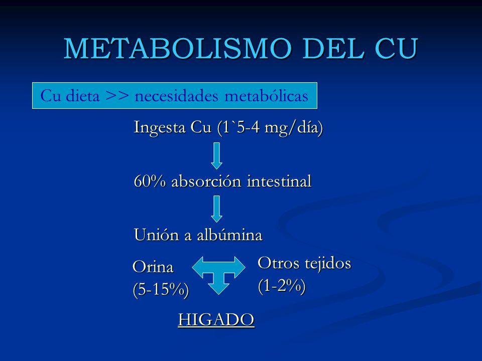 Ingesta Cu (1`5-4 mg/día) 60% absorción intestinal Unión a albúmina