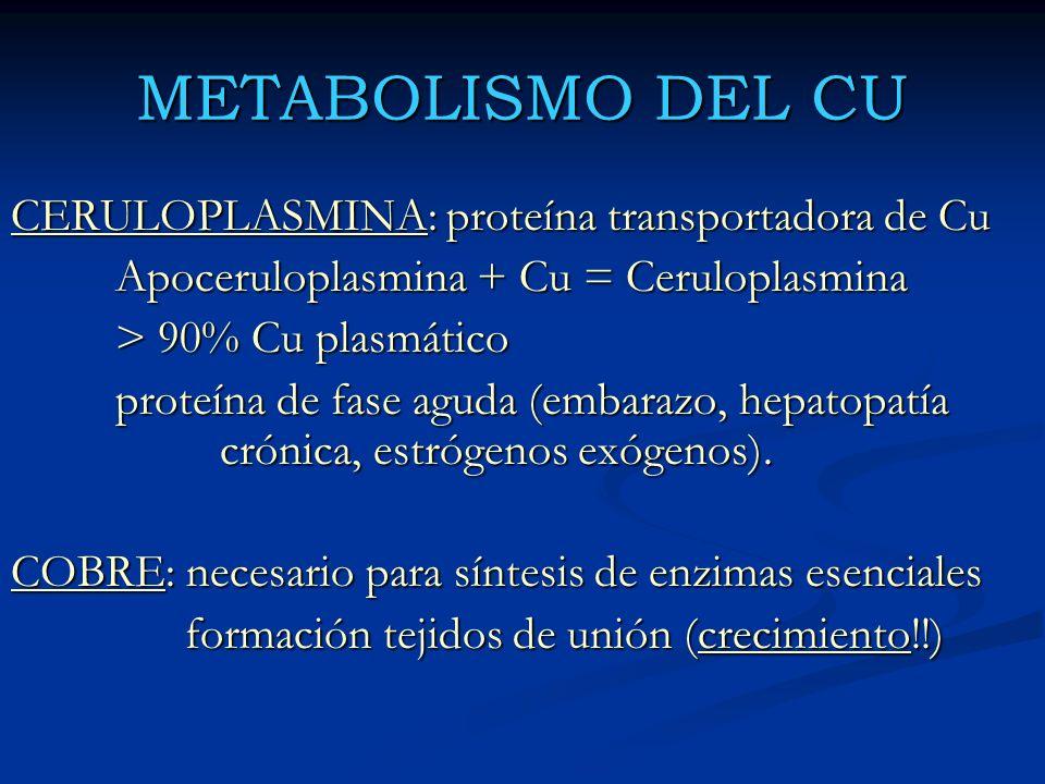 METABOLISMO DEL CU CERULOPLASMINA: proteína transportadora de Cu
