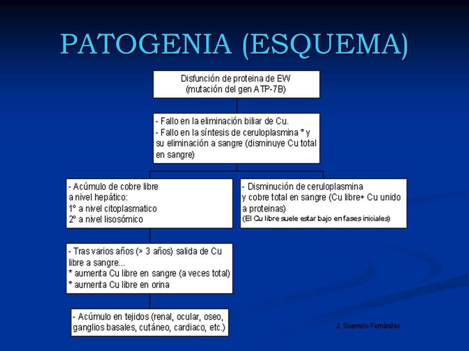 PATOGENIA (ESQUEMA)