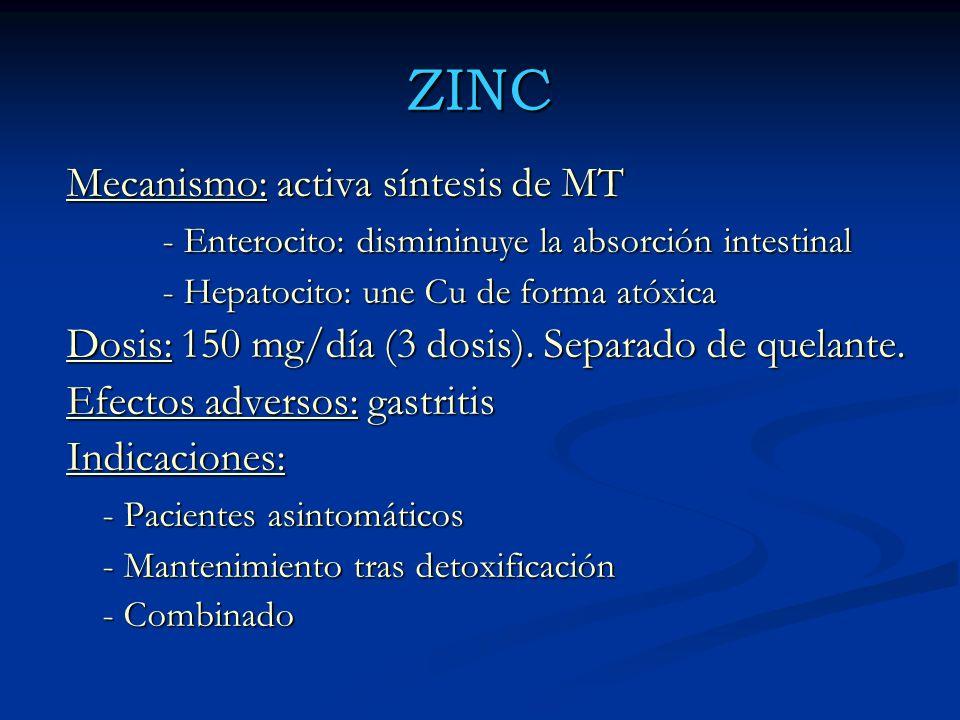 ZINC Mecanismo: activa síntesis de MT