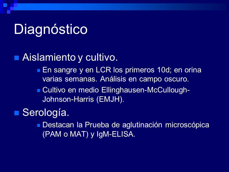 Diagnóstico Aislamiento y cultivo. Serología.