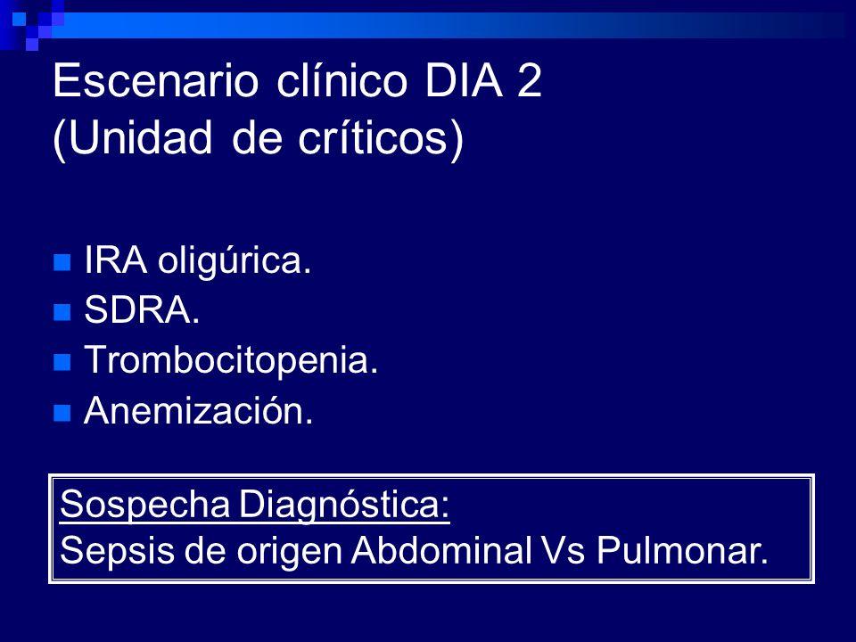 Escenario clínico DIA 2 (Unidad de críticos)