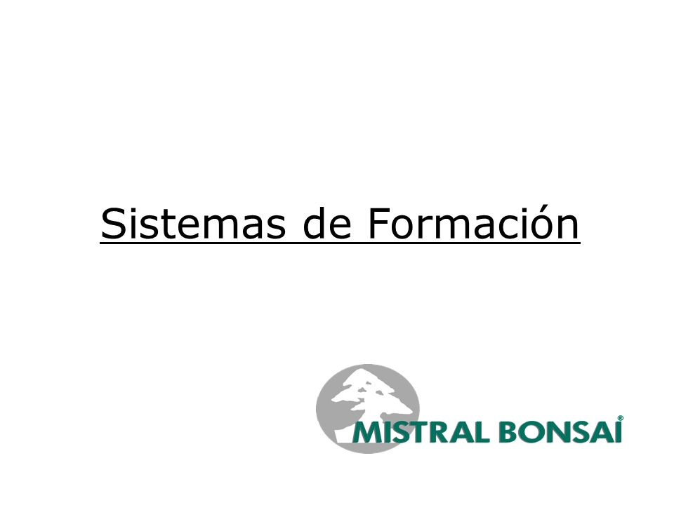 Sistemas de Formación