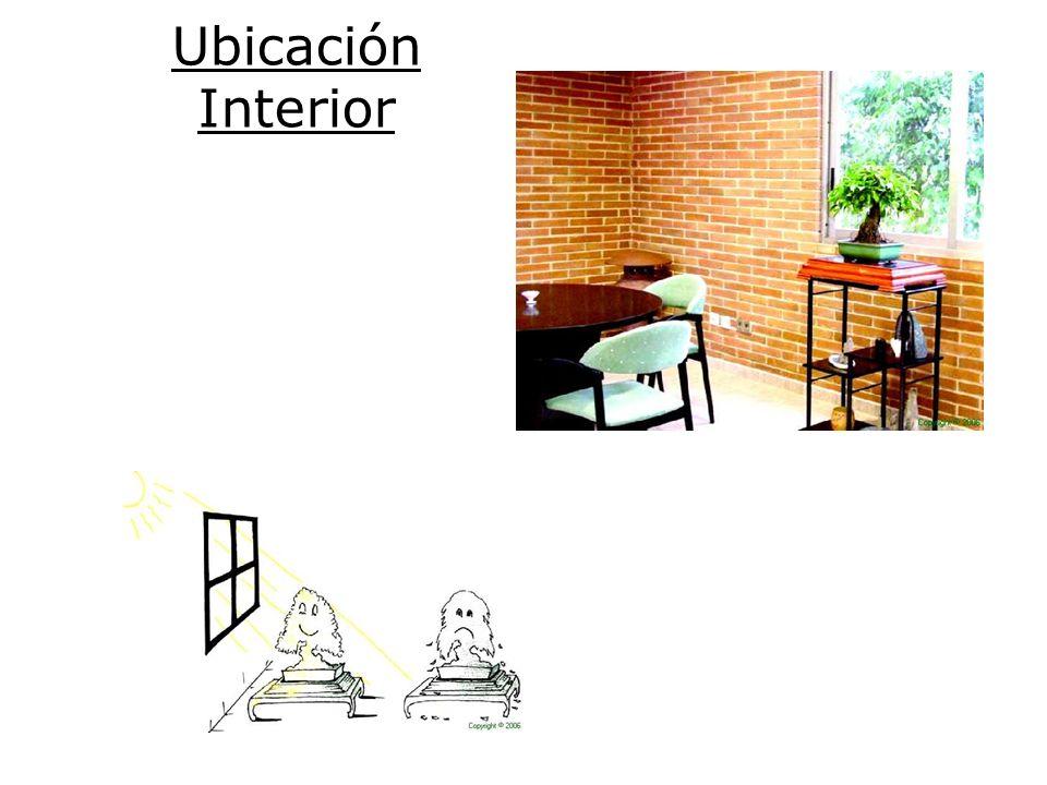 Ubicación Interior