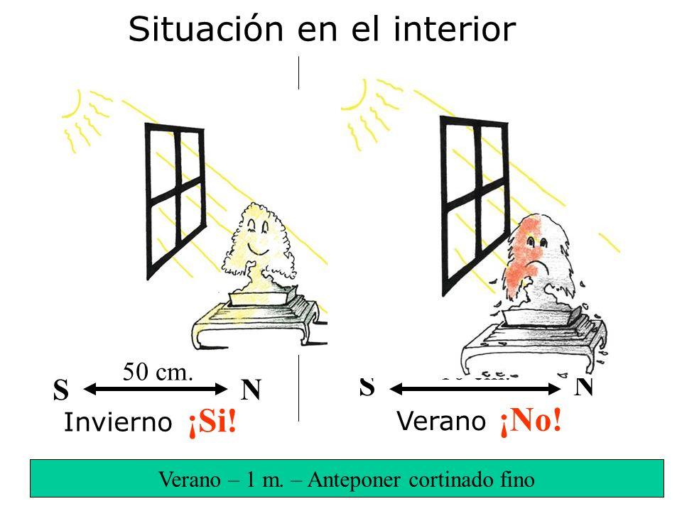 Verano – 1 m. – Anteponer cortinado fino