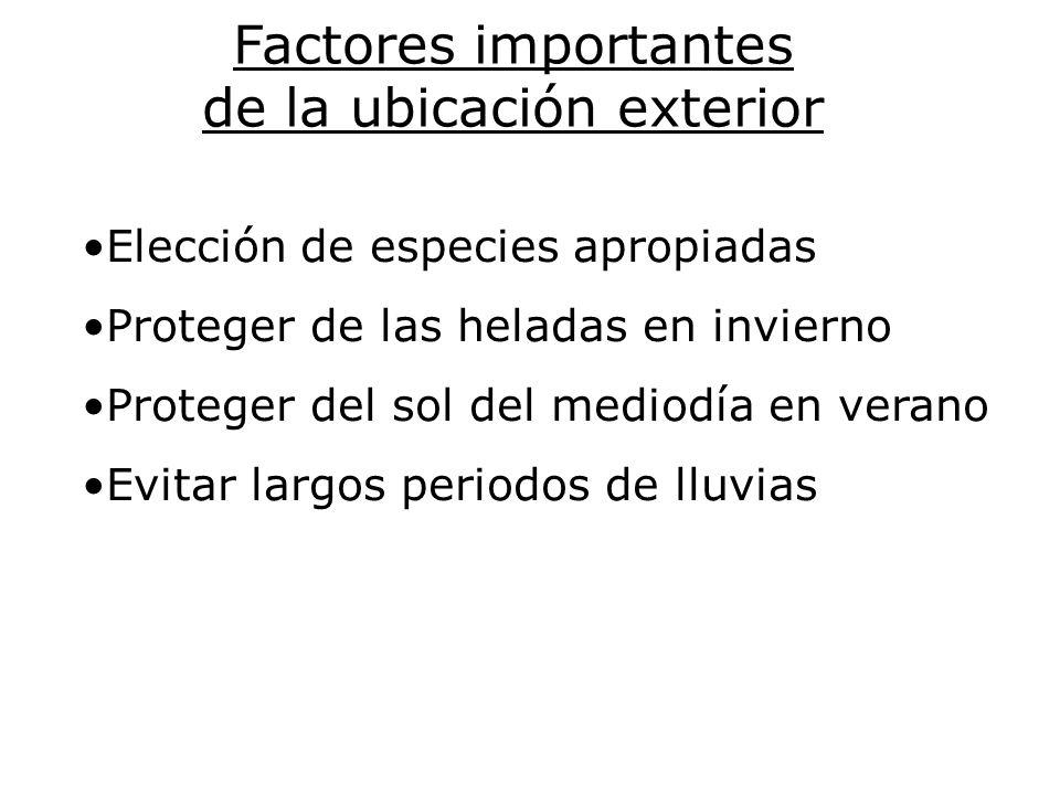 Factores importantes de la ubicación exterior