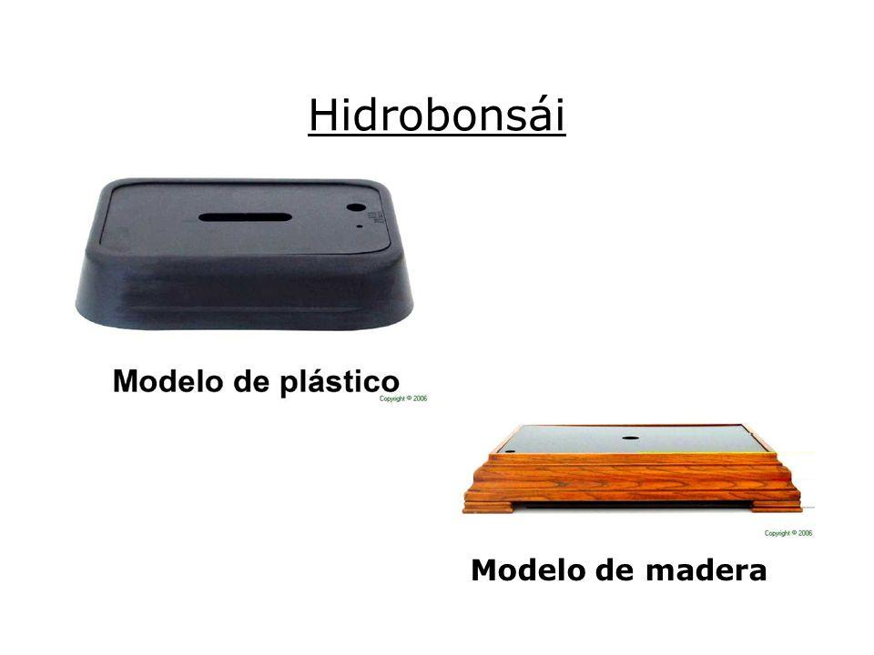 Hidrobonsái Modelo de madera