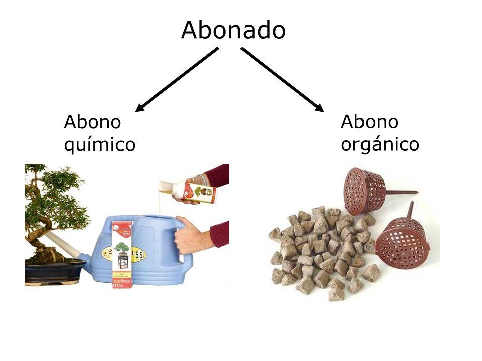 Abonado Abono químico Abono orgánico