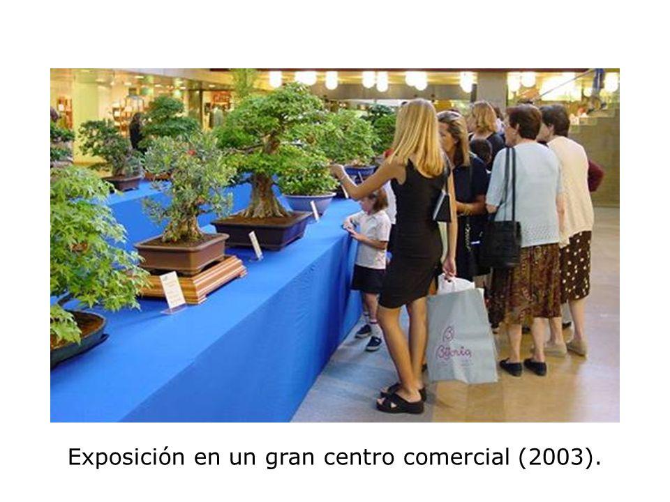 Exposición en un gran centro comercial (2003).