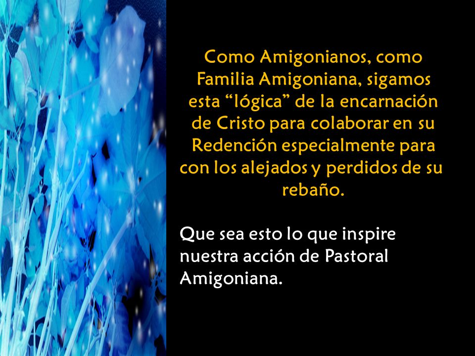 Como Amigonianos, como Familia Amigoniana, sigamos esta lógica de la encarnación de Cristo para colaborar en su Redención especialmente para con los alejados y perdidos de su